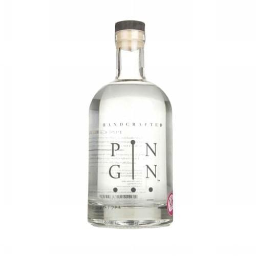pin-gin-1