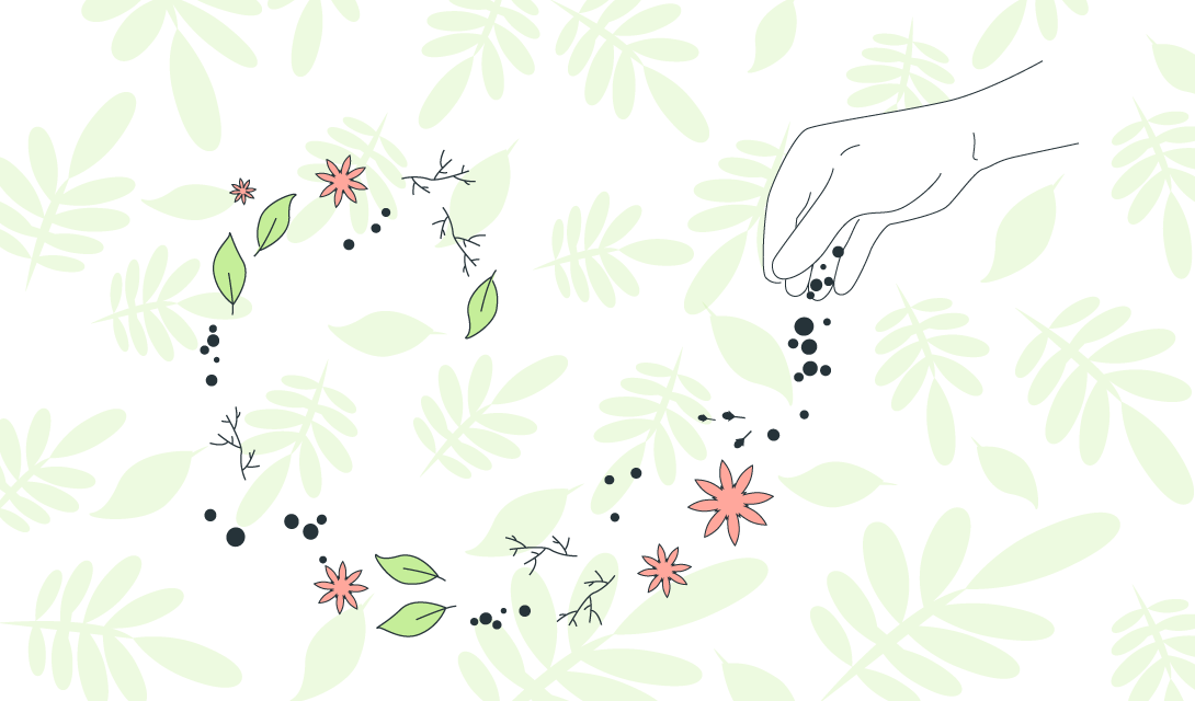 Gin Botanicals: The Spices That Create The Flavor Profile